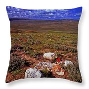 Colorful Valley From Fossil Lake Trail Throw Pillow