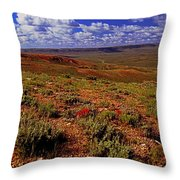 Colorful Valley From Fossil Lake Trailsil Bu Throw Pillow