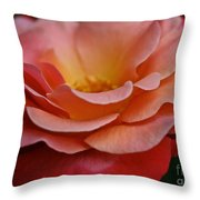 Colorific Throw Pillow
