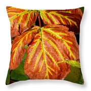 Colors And Veins Throw Pillow