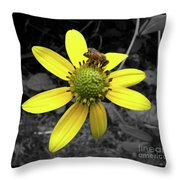Colors My World Throw Pillow