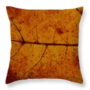 Colors Of Nature 4 Throw Pillow