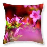 Colors Throw Pillow by Rebecca Sherman
