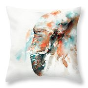 Colours Of Samburu Throw Pillow