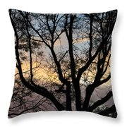 Colours Of The Dusk Throw Pillow