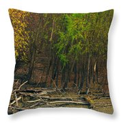 Columbia Bottoms Slough Throw Pillow