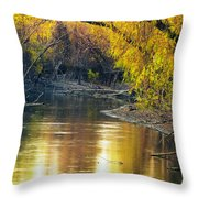 Columbia Bottoms Slough II Throw Pillow