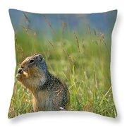 Columbia Ground Squirrel Feeding Throw Pillow