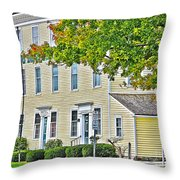 Columbian House Throw Pillow