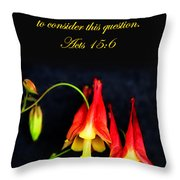 Columbine And Acts 15 16 Throw Pillow