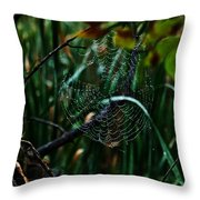Come Into My Palor Throw Pillow
