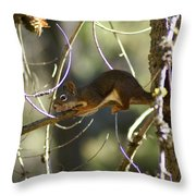Comfy In A Tree Throw Pillow