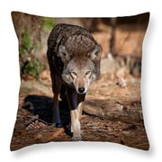 Coming Right At You Throw Pillow