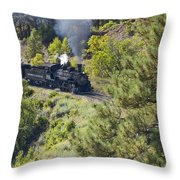 Coming 'round The Bend Throw Pillow