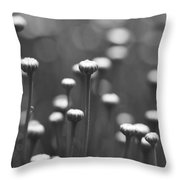 Coming Up Daisies Abstract In Black And White Throw Pillow