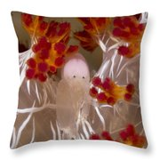 Commensal Shrimp On Soft Coral In Raja Throw Pillow