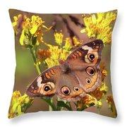 Common Buckeye  Throw Pillow
