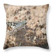 Common Checkered Skipper 8793 3421 Throw Pillow