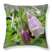 Common Comfrey - Symphytum Officinale Throw Pillow