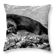 Common Fox Throw Pillow