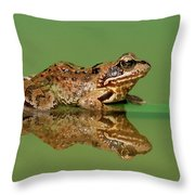 Common Frog Rana Temporaria Throw Pillow