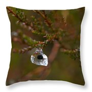 Common Frog Wrong Place Throw Pillow
