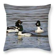 Common Goldeneye's Throw Pillow