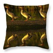 Common Mergansers On Rock Reflecting Throw Pillow
