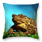 Common Toad Throw Pillow