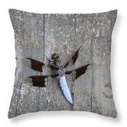 Common White Tail Dragonfly Throw Pillow