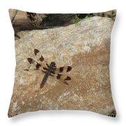 Common Whitetail Dragonfly Throw Pillow
