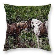 Companionship Throw Pillow