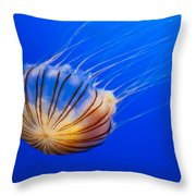 Compass Jellyfish Throw Pillow