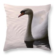 Completely Elegant Throw Pillow