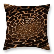 Complicated Journey Throw Pillow