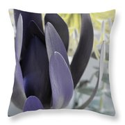 Complimentary Throw Pillow