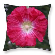 Composed Throw Pillow