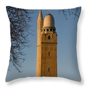 Compton Hill Water Tower Throw Pillow
