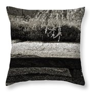 Concurrence Of Causes Throw Pillow