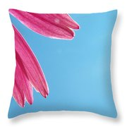 Cone Flower And Blue Sky Throw Pillow