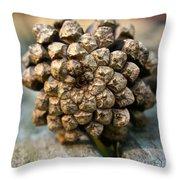 Cone Top Throw Pillow