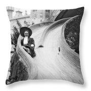 Coney Island: Slide Throw Pillow