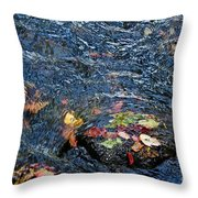 Confetti By Mother Nature Throw Pillow