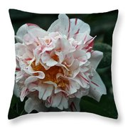 Confetti Floral Throw Pillow