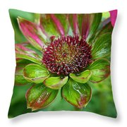 Confused Cone Flower Throw Pillow