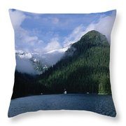 Conifer-covered Coastline Of Warm Throw Pillow