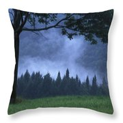 Coniferous Trees Early In The Morning Throw Pillow