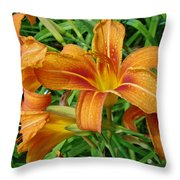 Consider The Lilies Of  The Field - Hemerocallis Fulva Throw Pillow