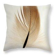 Contour Feather Throw Pillow