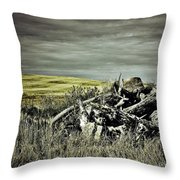 Controlled Burn Throw Pillow